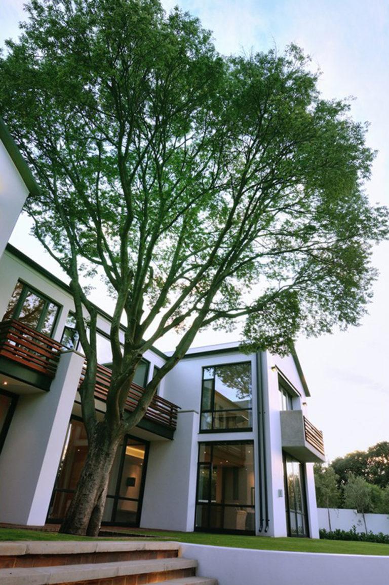 MAAA - House Fouché