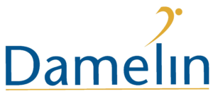Damelin - Logo