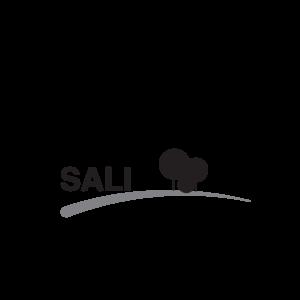 MAAA SALI Award Icon